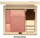 Duo Radiance Blush